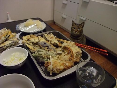 天ぷらとチー